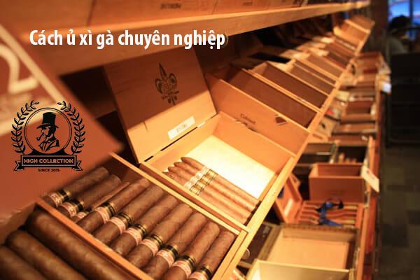 cách ủ xì gà chuyên nghiệp