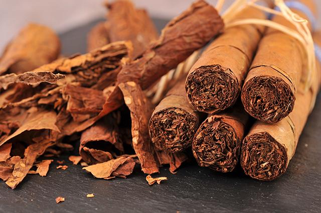 Xì gà bị khô