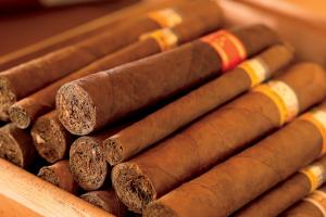xì gà ngon